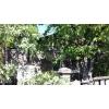 Недорого продам.  дом 7х7,  8сот. ,  Ясногорка,  вода,  газ